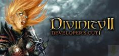 divinity ii developers cut
